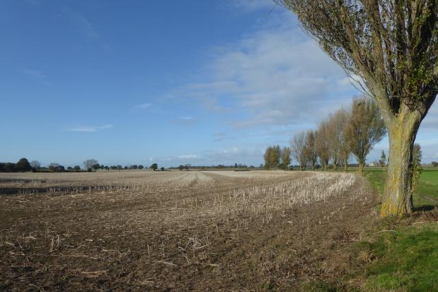Empty field beside the bridleway