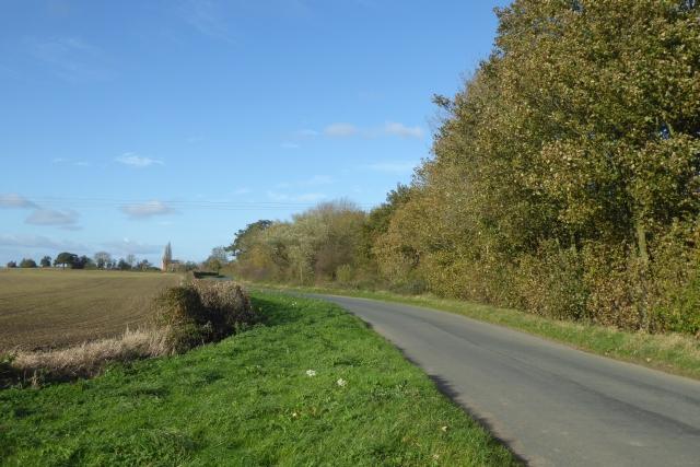 Stillingfleet to Kelfield road