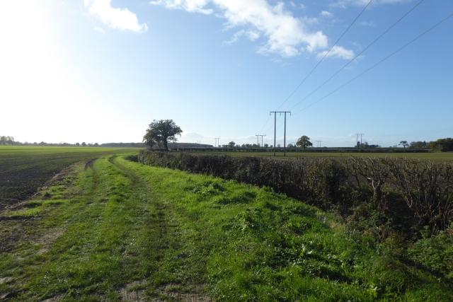 Farm track near Stillingfleet Mine