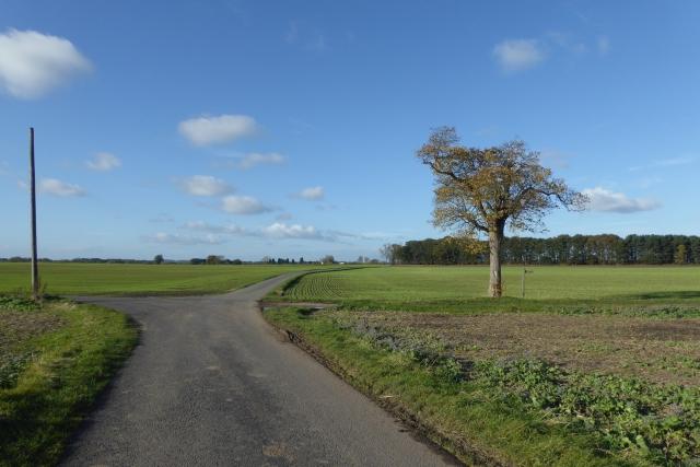 Road meets bridleway