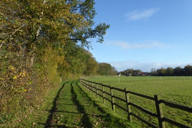 Bridleway through Coachroad Plantation