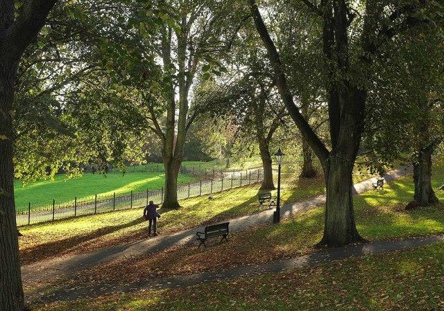 Cotham gardens