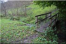 SY1988 : Branscombe : Footbridge by Lewis Clarke