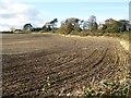 NT9443 : Harrowed field below Mattilees Hill by Oliver Dixon
