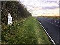 SE8490 : A169 towards Pickering by David Dixon