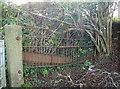 ST5966 : An old gate by Neil Owen