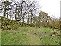 SE0737 : Footpath below Rough Plantation by Stephen Craven