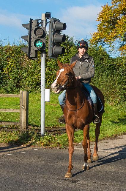 Equestrian crossing