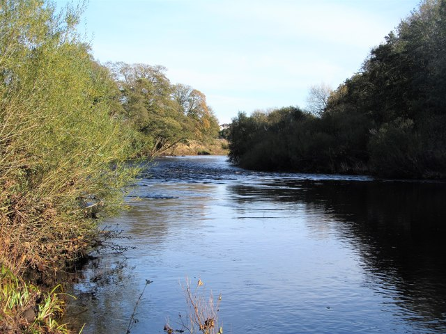 The Tees between High and Low Coniscliffe