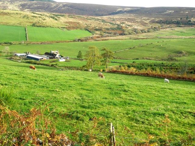 Tillenturk farmstead