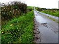 H5565 : Kilcam Road, Radergan by Kenneth  Allen