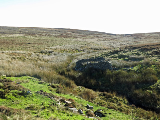 Ruined sheepfold and the upper valley of Sipton Burn