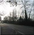 TL1894 : London Road by Alex McGregor