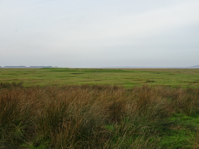 Rifle range on Llanrhidian Marsh