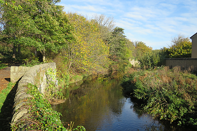 Water of Leith by Anne Burgess