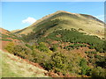 NS8697 : Autumn colour in Balquharn Glen by Alan O'Dowd