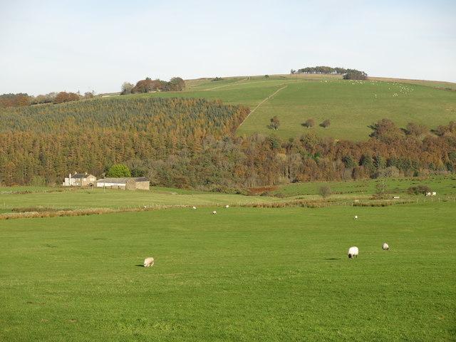 Farmland west of Crowberry Hall