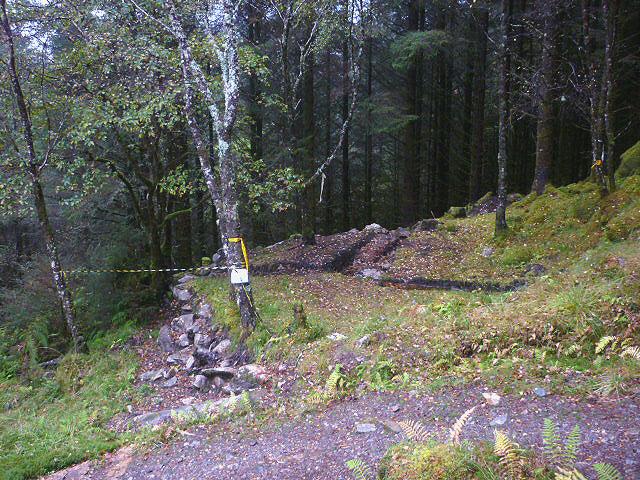 Old charcoal platform, Ardmolich Wood (2)