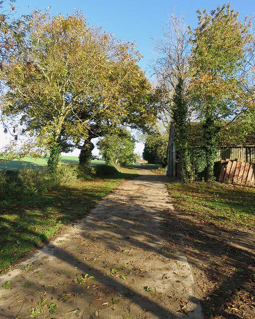 Bridle way near Baldock