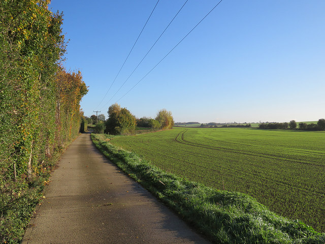 Farm track and bridle way