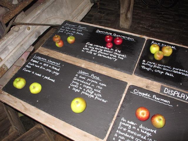 Apple display, Snowshill Manor