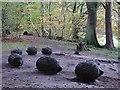 NY5459 : Hedgehog sculpture, Talkin Tarn by Andrew Curtis