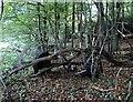 TQ7819 : Remains of farm cart by Hurst Lane, Sedlescombe by Patrick Roper