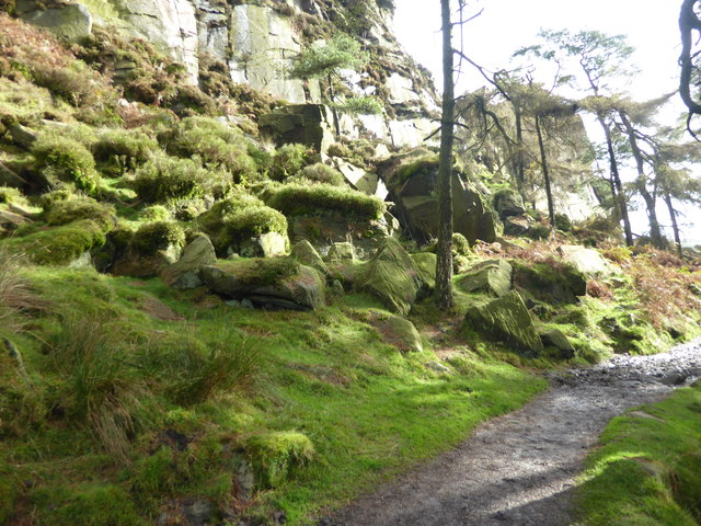 Path by The Roaches