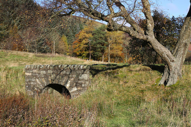 A small bridge in the Yarrow Valley