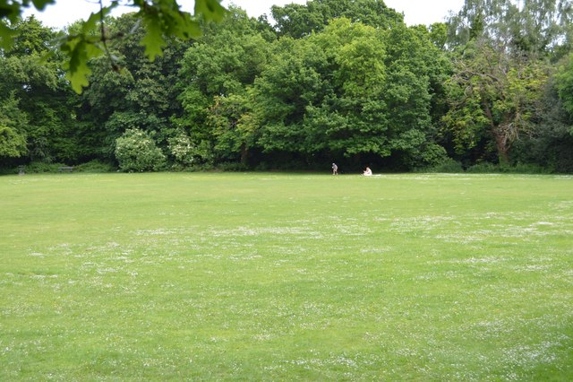 Lower Cricket Pitch by N Chadwick