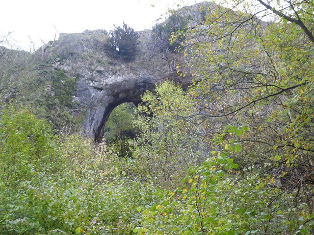 Looking up to Reynard's Cave