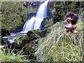 NS2459 : Gogo Water (waterfall) by Raibeart MacAoidh