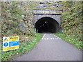 SK1871 : Entrance to Headstone Tunnel by Marathon