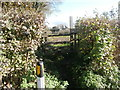 ST0781 : Stile to footpath, Groesfaen by John Lord