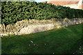 TF0216 : Stone wall by Bob Harvey