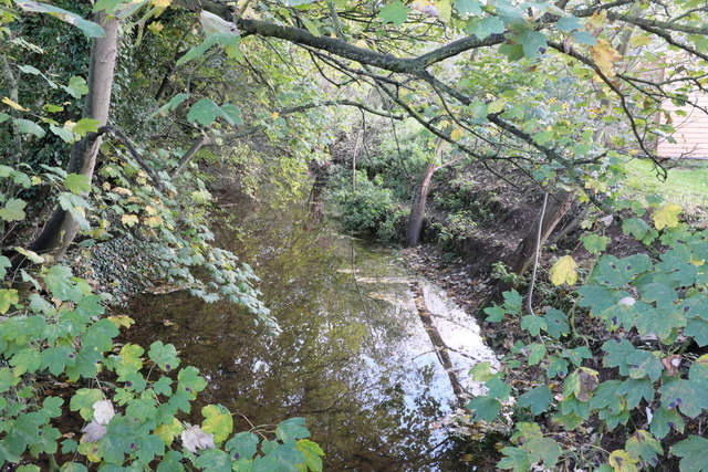 Downstream from the bridge
