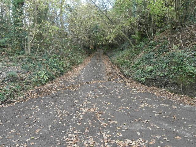 Lane near Rhiwsaeson