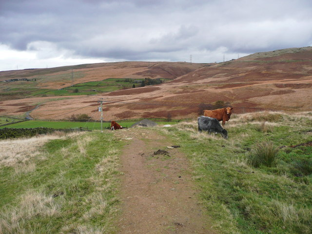 The Pennine Bridleway at the foot of Stormer Hill, Littleborough