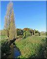 TL4748 : The Cam near Whittlesford by John Sutton