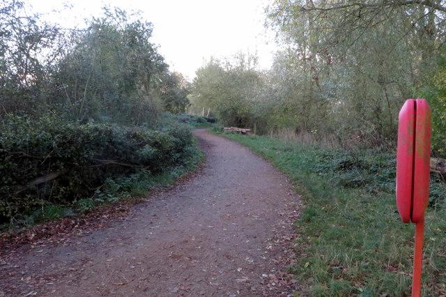 Footpath round the lake