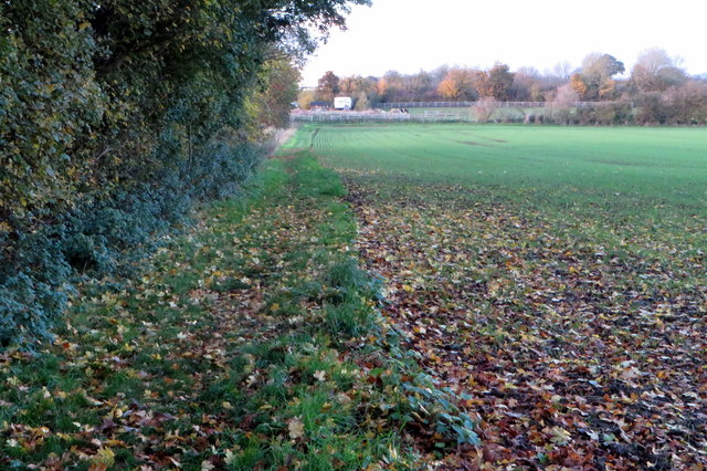 Footpath towards Odell