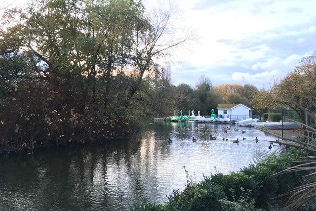 Boating Lake at Stanborough Park