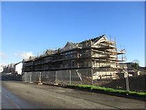 NS4074 : New housing under development, Castle Road by Jonathan Thacker