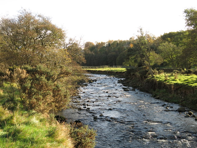 The River East Allen by Bishopfield Haugh