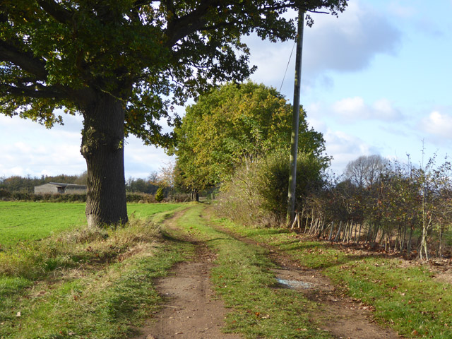 Farm track running west from Drove Road