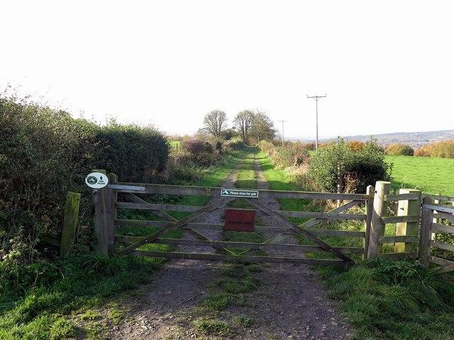 West Lane near Cut Thorn Farm