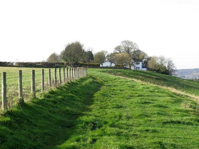 Footpath near Gibside Hillhead