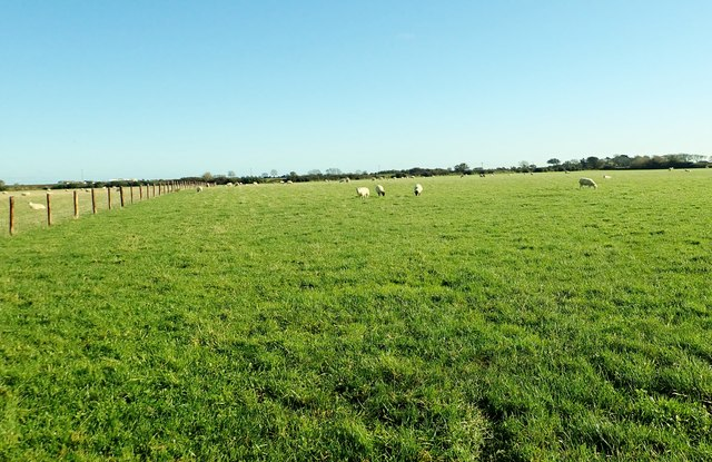 Rich grazing land on the east side of Templetown Road