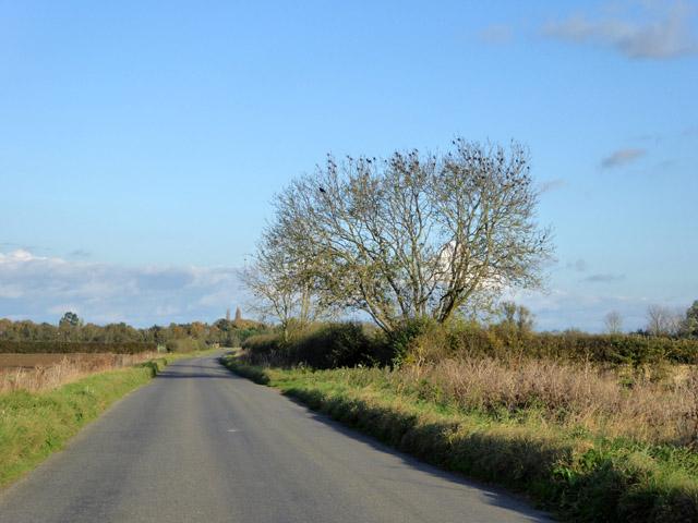 Graveley Way