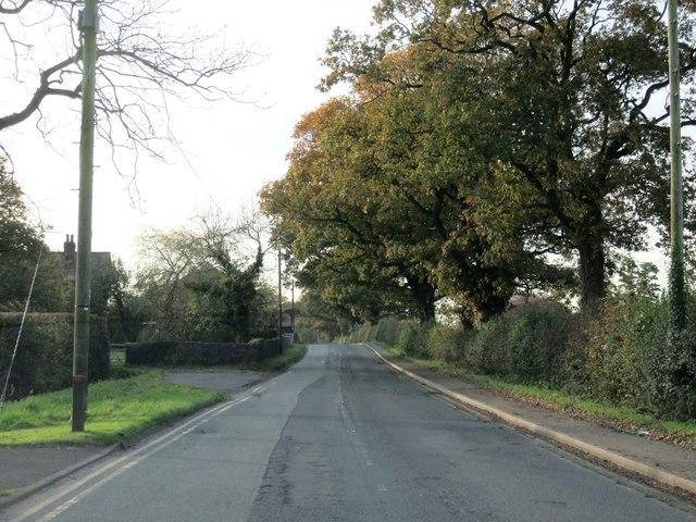 Newsham Hall Lane out of Broughton